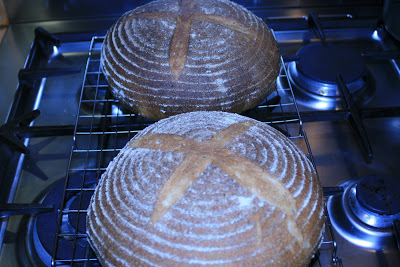 Sourdough loaves baked
