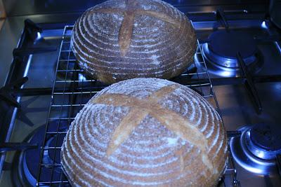 Sourdough loaves baked