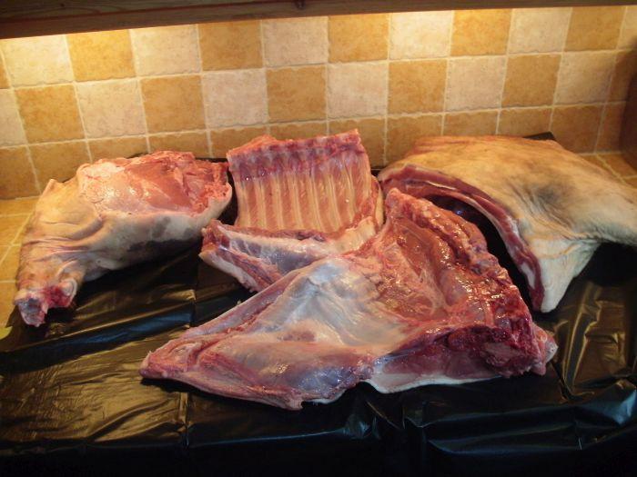 Pork carcass