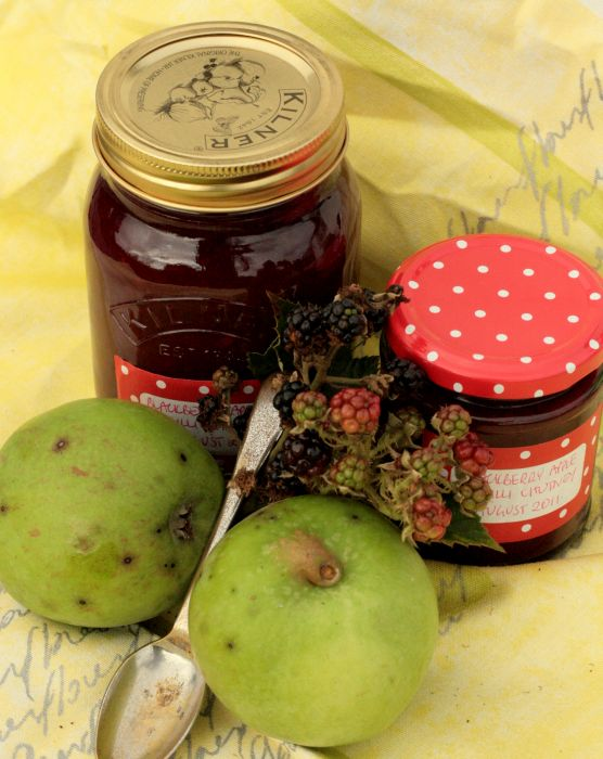 Blackberry Apple Chilli Chutney