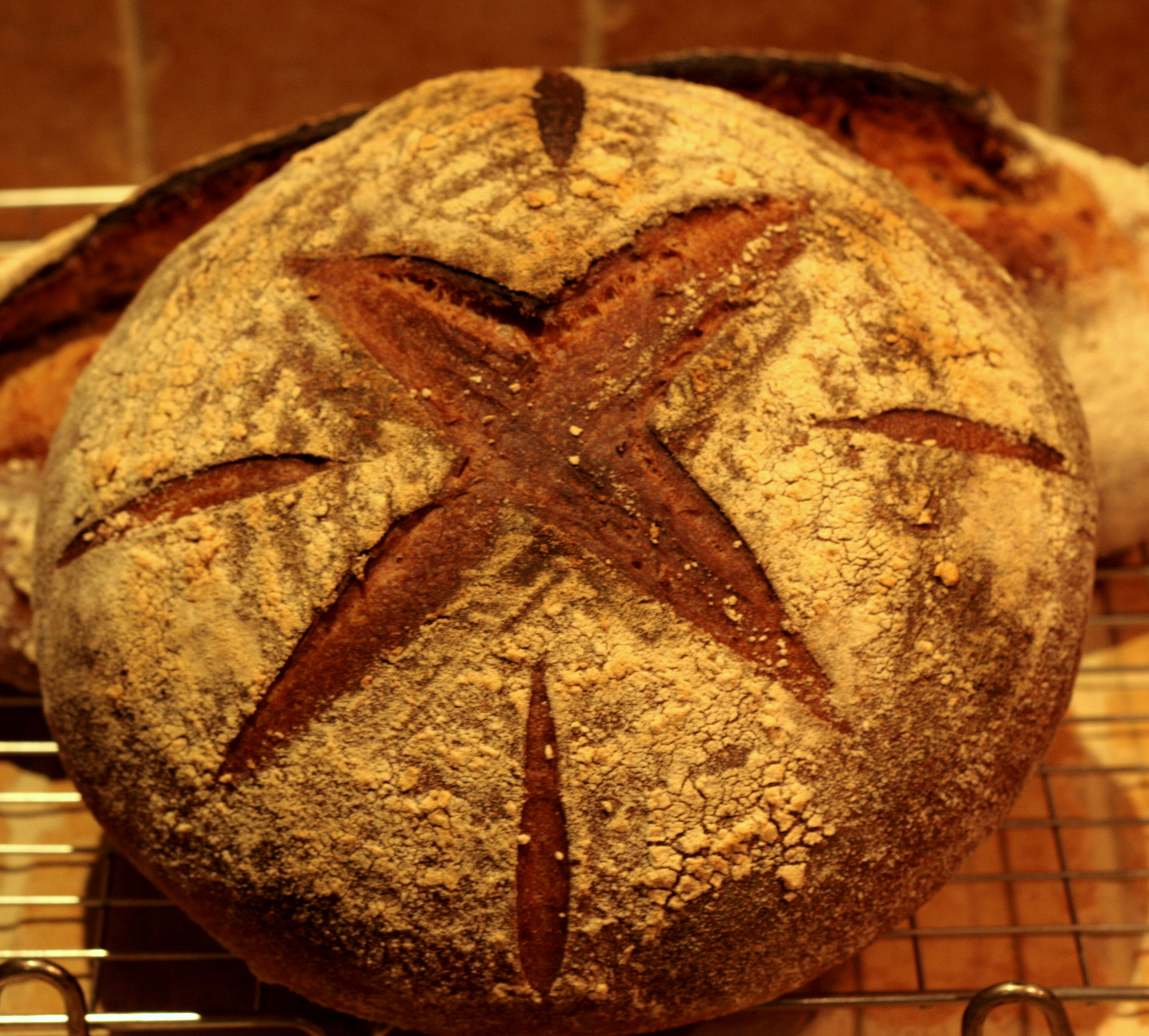 White and kamut sourdough loaf: round with star scoring