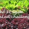 52 Week Salad Challenge - January pickings