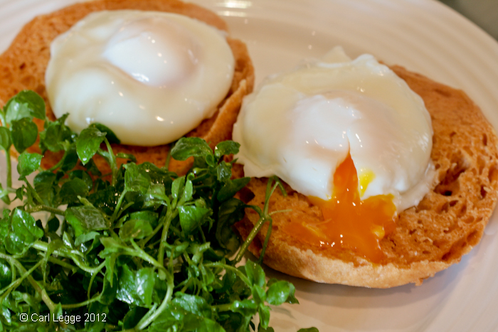 Cider vinegar muffins, with poached eggs and chickweed salad