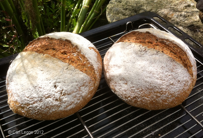 Wholemeal & wholemeal spelt yeasted loaves
