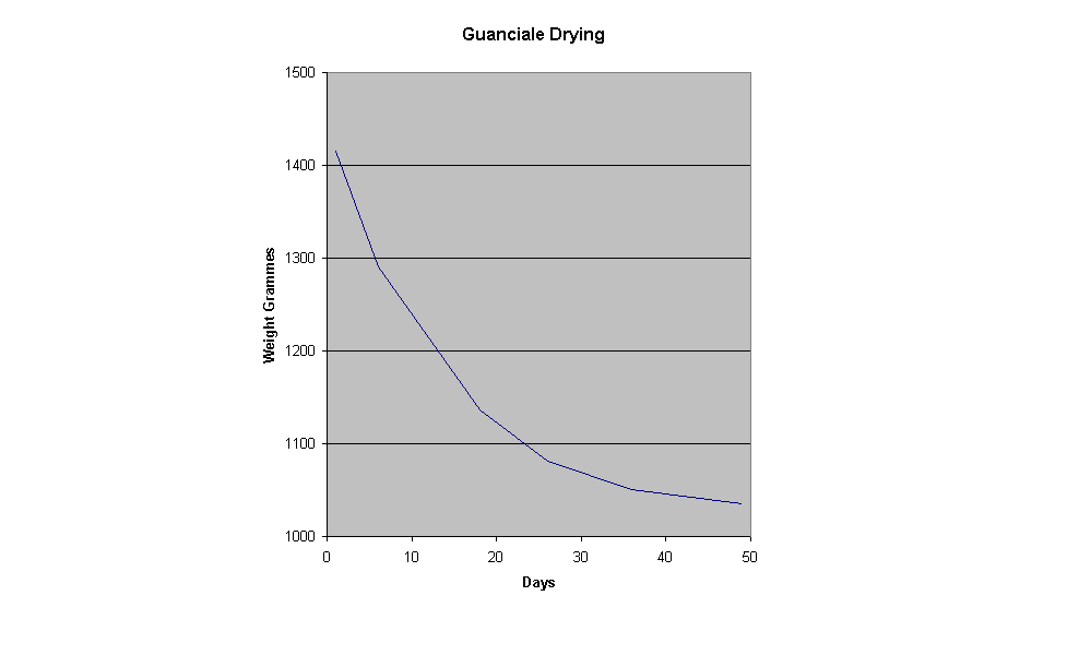 Graph showing guanciale drying weight against time