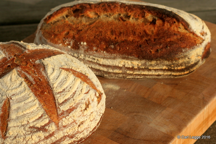 Sourdough pain de campagne boule and long loaves